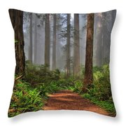 Path Thru The Redwoods Throw Pillow by Michael  Ayers