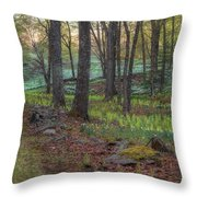 Path To The Daffodils Throw Pillow by Bill Wakeley
