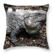 Patience Throw Pillow by Terry Reynoldson