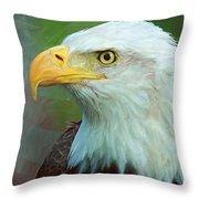 Patriot Throw Pillow by Heidi Smith