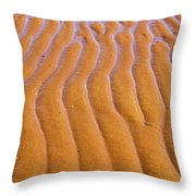Patterns in the Sand at Low Tide Throw Pillow by Diane Diederich
