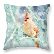 Peaches In The Snow Throw Pillow by Amy Tyler