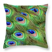 Peacock Feather Cascade Throw Pillow by Angelina Vick