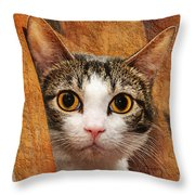 Peek A Boo I See You Throw Pillow by Andee Design