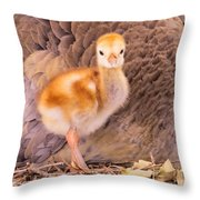 Peek-a-boo I See You Throw Pillow by Zina Stromberg