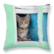 Peek-a-boo Throw Pillow by Jean Haynes