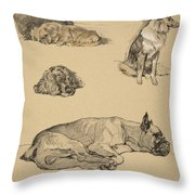 Peke, Collie, Spaniel And German Boxer Throw Pillow by Cecil Charles Windsor Aldin