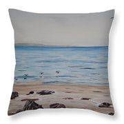 Pelicans At El Capitan Throw Pillow by Ian Donley