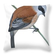 Penduline Tit  Throw Pillow by Anonymous