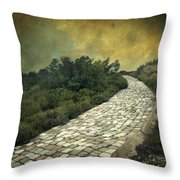 Perdus Et Trouves Throw Pillow by Taylan Soyturk