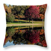 Perfect Day Throw Pillow by Rob Blair