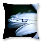 Perfect Drop Throw Pillow by Lisa Knechtel