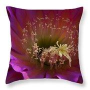 Perfectly Pink Throw Pillow by Saija  Lehtonen