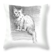 Persian Cat Throw Pillow by Sarah Parks