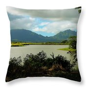 Picnic Spot Throw Pillow by Cheryl Young