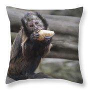 Picnic Throw Pillow by Svetlana Sewell
