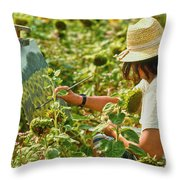 Picture in a Picture Throw Pillow by Heiko Koehrer-Wagner