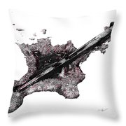 Pierced  Throw Pillow by Aaron Spong