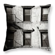 Pigeon Throw Pillow by Dave Bowman