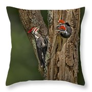 Pilated Woodpecker Family Throw Pillow by Susan Candelario