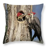 Pileated Woodpecker And Chick Throw Pillow by Susan Candelario