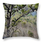 Pine Tree On A Mountain Throw Pillow by Susan Leggett