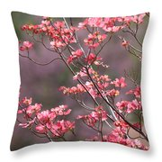 Pink And Purple Spring Trees Throw Pillow by Carol Groenen