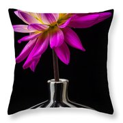 Pink Dahlia In Striped Vase Throw Pillow by Garry Gay