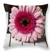 Pink Mum On Piano Keys Throw Pillow by Garry Gay