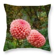 Pink Orange Dahlia Flowers Art Prints Gardens Throw Pillow by Baslee Troutman