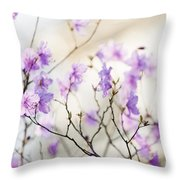Pink Rhododendron In Spring Throw Pillow by Elena Elisseeva