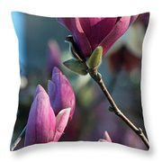 Pink Saucer Magnolia II Throw Pillow by Suzanne Gaff