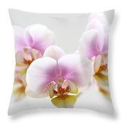 Pink Sensation Throw Pillow by Juergen Roth