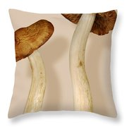 Plant - Mushrooms - I'm So Proud Of My Daughter Throw Pillow by Mike Savad