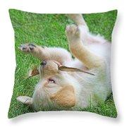 Playful Yellow Labrador Retriever Puppy Throw Pillow by Jennie Marie Schell