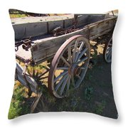 Please Dont Kick The Tires Throw Pillow by John Malone