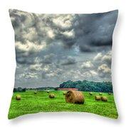 Plentiful Throw Pillow by Reid Callaway