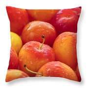 Plums  Throw Pillow by Elena Elisseeva