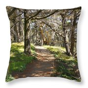 Point Lobos Cypress Path Throw Pillow by Jack Schultz