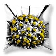 Pollen  Throw Pillow by Steve Taylor