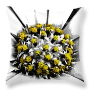 Pollen  Throw Pillow by Steve Taylor