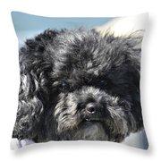 Poodle Throw Pillow by Susan Leggett