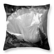 Poppy Flower 2 Throw Pillow by Heather L Wright