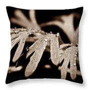 Poppy Foliage Throw Pillow by Chris Berry