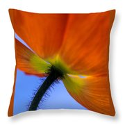 Poppy Portrait Throw Pillow by Kathy Yates