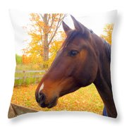 Portrait Of A Beauty Throw Pillow by Lingfai Leung