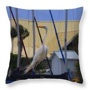 Posing Egret Throw Pillow by Debra Forand