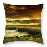 Positive Reinforcement Throw Pillow by Andrew Paranavitana