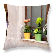 Potted Flowers 02 Throw Pillow by Rick Piper Photography