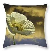 Prelude To Spring Throw Pillow by Lynn Bauer
